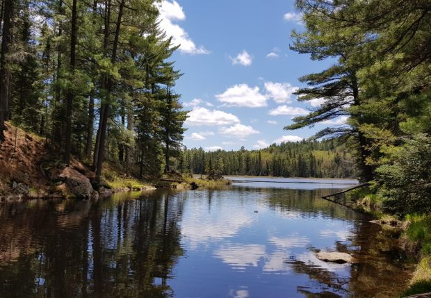 Algonquin Nationalpark